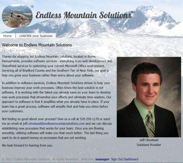 Endless Mountain Solutions Original Website