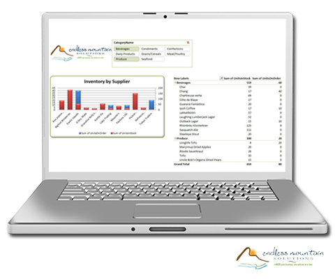 Integrated Excel Reports For Procare Physical Therapy Endless Mountain Solutions