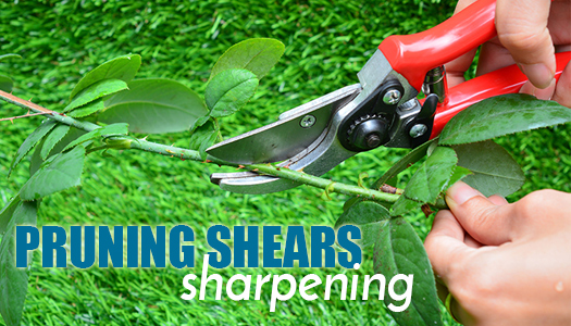 Pruning Shears Sharpening Sharpening Services