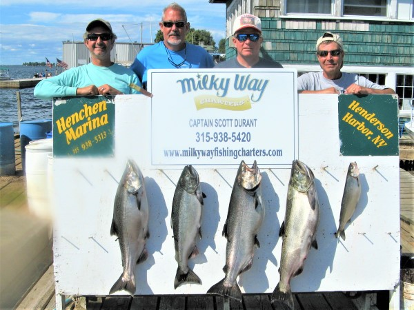 A Nice Catch of Kings for Pete, Nigel, Dave & Jimmy!