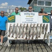 10 Lake Trout & 4 Browns for the Remington Party!