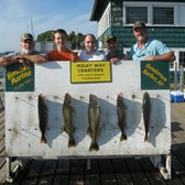 Henderson Harbor Fishing with Milky Way Charters - We worked hard for these trophy Walleye with the Gary Babcock party