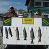 Henderson Harbor Fishing with Milky Way Charters - Father and Son Fishing Fun!