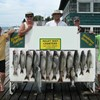 Henderson Harbor Fishing with Milky Way Charters - Limit of Lakers with Bonus Steelhead and Brown!
