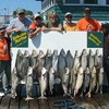 Henderson Harbor Fishing with Milky Way Charters - Nice Combination Catch from Multiple Boat Charter!