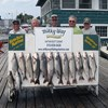 Henderson Harbor Fishing with Milky Way Charters - The Titus Mast Party with 12 Lake Trout, 1 Brown & 1 Steelhead!