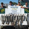 A Lake Trout Limit & 31 LB. King for the Peachey Party!