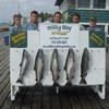 A Nice Catch of Kings for the Matt Zehr Party!