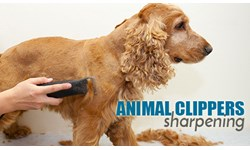 Animal Clippers Sharpening