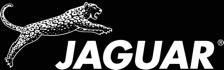 Jaguar Hair Styling Scissors