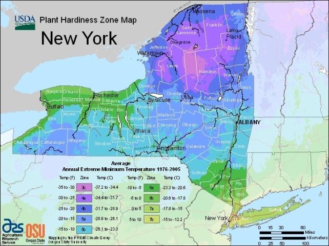 USDA Plant Hardiness Zone Map - New York State